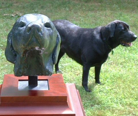 Bronze sculpture portrait of a female labrador
