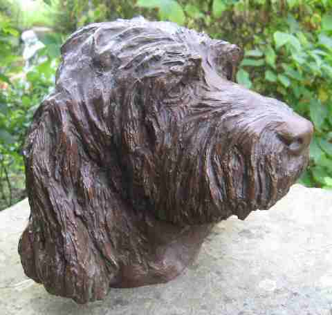 Portrait of an Italian Spinone - dog sculpture by Laury Dizengremel